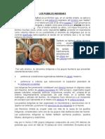 Exposicion de Los Pueblos Indigenas