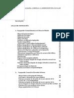 81656.pdf
