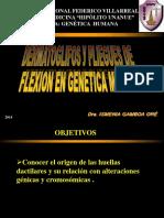DERMATOGLIFOS.pdf