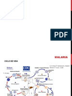 7_malaria.pptx