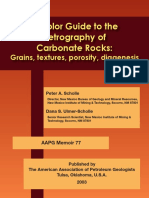 A Colour Guide to the Petrography of Carbonate Rocks (Scholle&Scholle)