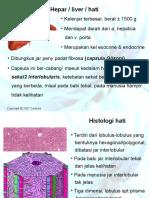 Sistem Pencernaan 3