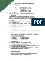 8221882 Plan de Trabajo Reynado Marianista 2008
