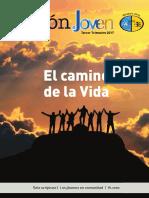 REVISTA JOVEN.pdf