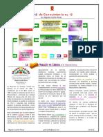 12 Reacción en cadena.pdf