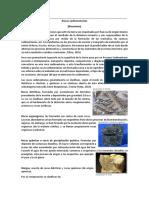 Resumen de Rocas Sedimentarías