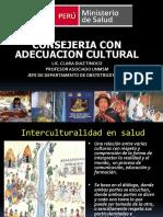 Consejeria Con Adecuacion Cultural