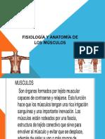 Fisiología y anatomía de los músculos.pptx