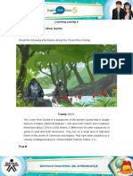Cross River Gorilla Doc 22