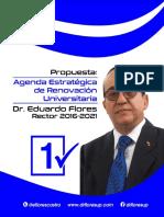 Plan de Trabajo Dr Flores