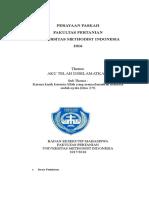 PROPOSAL Porseni BEM FP UMI.doc