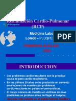 2. BRIGADAS - RCP