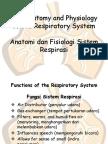 Anatomi Respirasi (Translate)