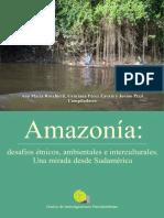 Amazonia Desafios Etnicos Ambientales e Interculturales Una Mirada Desde Sudamerica