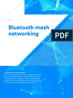 Mesh Technology Overview