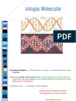 Técnicas de Biologia Molecular