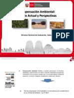 2016 Compensación Ambiental.pdf