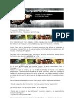 Historia XIII - Fatal Fury Team