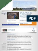 PDF Diplomatura en La Industria de Petróleo & Gas 2017