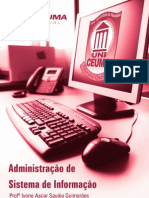 Administracao de Sistema de Informacao 2010