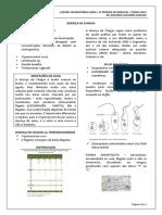 03 DTI 15.08 - Doença de chagas (Dr. Eduardo).docx