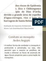 Combate Ao Mosquito (1)