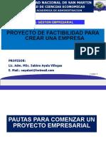 V. Proyecto de Factibilidad V