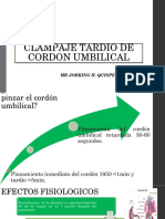 Clampaje Tardio de Cordon Umbilical