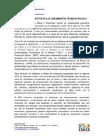 Resumen Lineamientos PAI Cauca 2014 OK