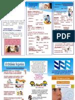 Triptico Informativo Lenguaje Version Mejorada