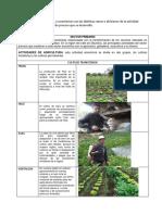 Sectores Productivos Valle de Sibundoy