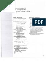 Muchinsky, P. (2007) - Cap. 6 Aprendizaje Organizacional