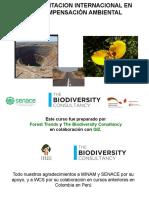 2016 compensaciones ambiental.pdf