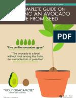 20160502+Avocado+E-book+by+desima+dot+co
