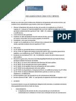 Directiva Para Liquidación de Obras Por Contrata Chana (1)