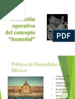 Def Operativa Humedal