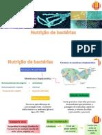 Nutricao Bacterial