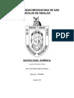 1. Preguntas de Sociología Jurídica