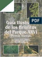 Guia Ilustrada de Los Briofitos Del Parque ARVI