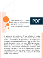 Macroscopia e Conservação de Peças Anatômicas Aula 2