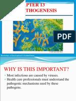 Chapter 13 Viral Pathogenesis.ppt