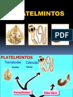 Platelmintos Plus Medica