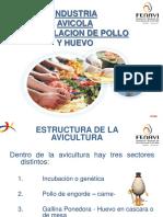 Manipuladocion Pollo y Huevo Industria Avicola 2017