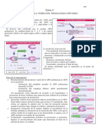 Apuntes Ampliación de Genética Universidad Alicante