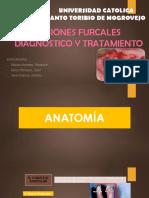 lesiones furcales - periodoncia02