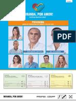 Programa da União de Freguesias de Semide e Rio de Vide