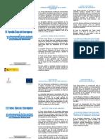 Tríptico de Cofinanciación en La Comunidad Valenciana de La FPB