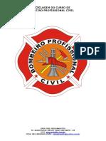 BOMBEIRO PROFISSIONAL CIVIL (3).pdf
