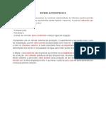 Texto - Sistema Superintensivo