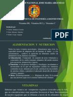 DIAPOSITIVA NUTRICION